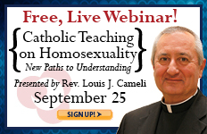 Webinar: Catholic Teaching on Homosexuality
